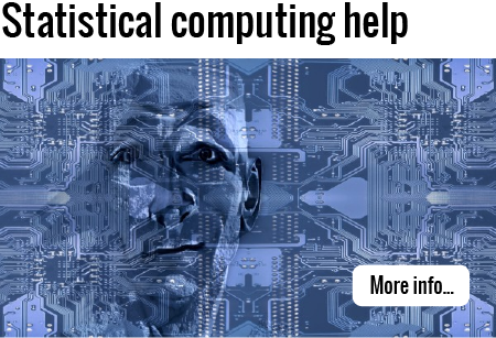 Click to find out more about consulting for statistical computing