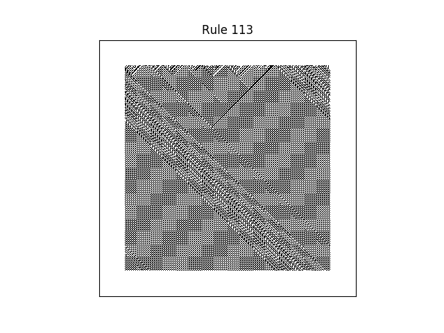 rule 113 with random initial conditions