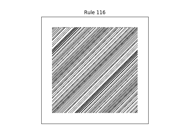 rule 116 with random initial conditions