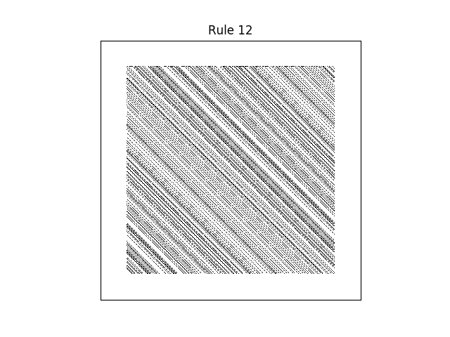 rule 12 with random initial conditions