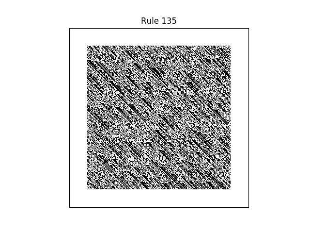 rule 135 with random initial conditions
