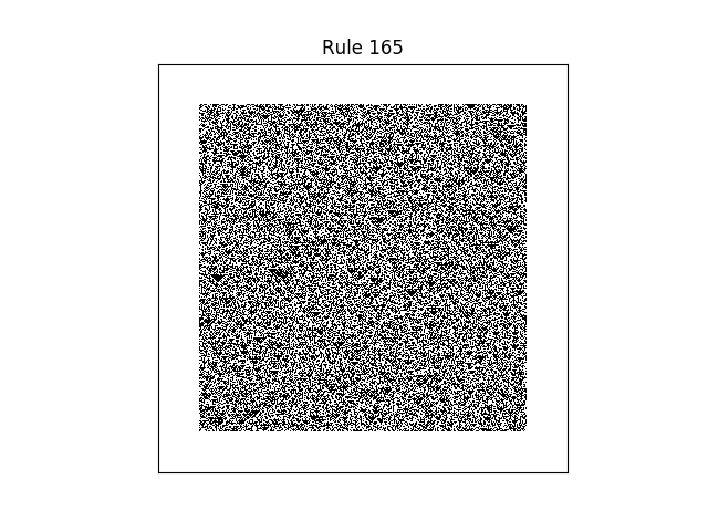 rule 165 with random initial conditions