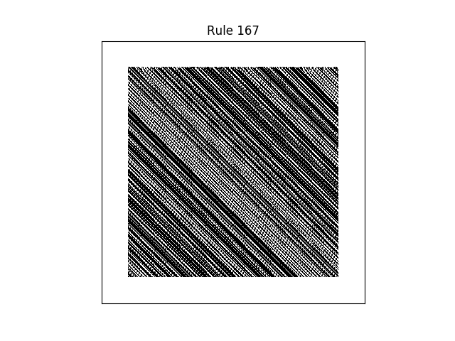 rule 167 with random initial conditions