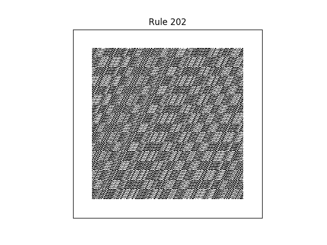 rule 202 with random initial conditions