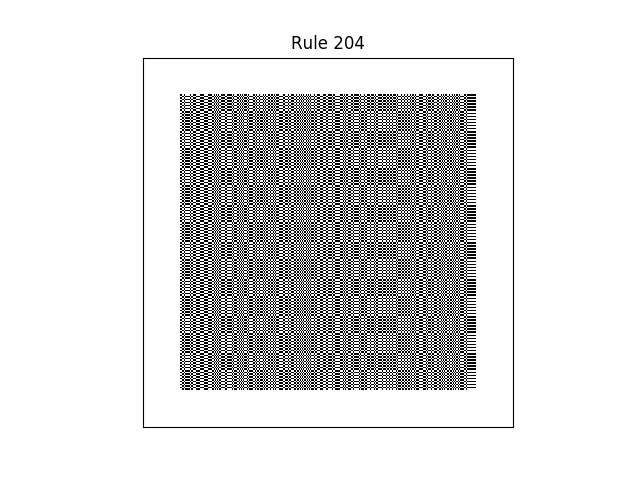 rule 204 with random initial conditions
