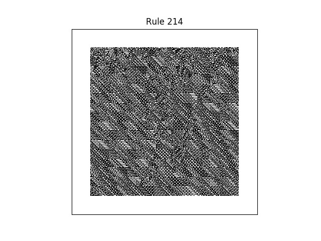 rule 214 with random initial conditions