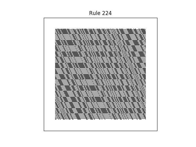 rule 224 with random initial conditions