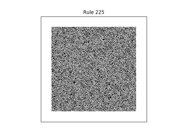 rule 225 with random initial conditions