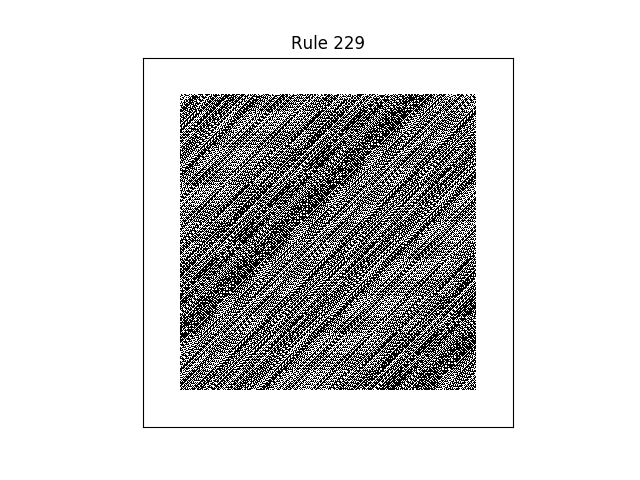 rule 229 with random initial conditions