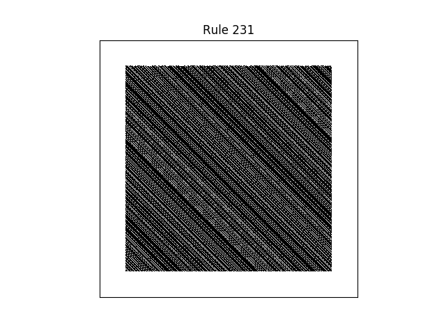 rule 231 with random initial conditions