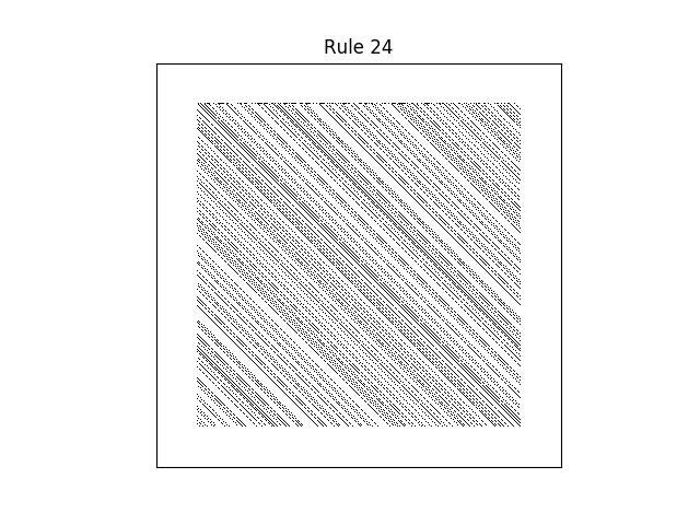 rule 24 with random initial conditions
