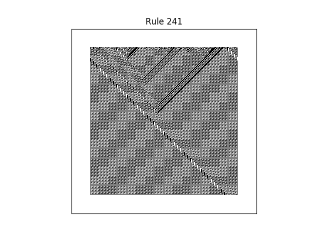rule 241 with random initial conditions