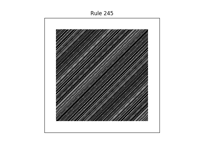 rule 245 with random initial conditions