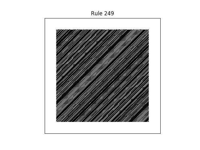 rule 249 with random initial conditions