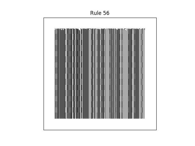 rule 56 with random initial conditions