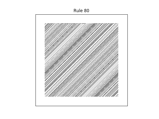 rule 80 with random initial conditions
