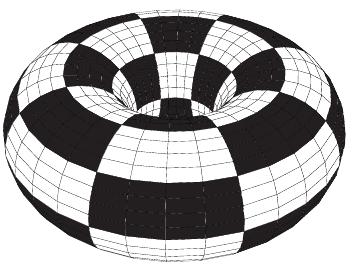 checkerboard torus