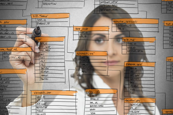 database schema