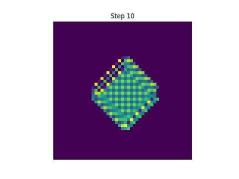 step 10